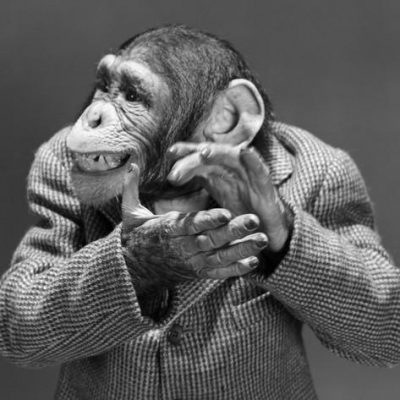 1950s-1960s-monkey-chimp-chimpanzee-dressed-business-sport-jacket-clapping-hands.jpg